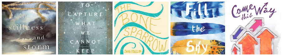 Spring TBR: Of Stillness and Storm, To Capture What We Cannot Keep, The Bone Sparrow, Fill the Sky, Come This Way